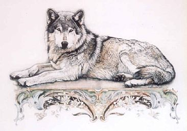 Pencil and watercolor Pencil Drawings Of Wolves Faces
