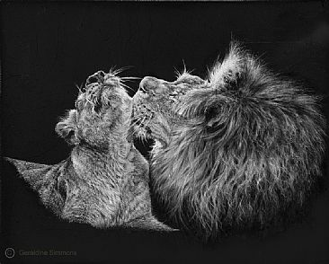 Heart Space - Lions by Geraldine Simmons