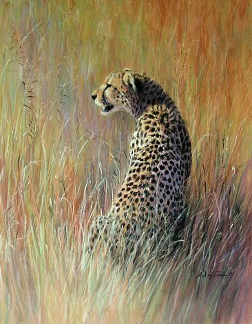 Facing a New Day - Cheetah at first Light, Serengeti, Tanzania by Angela Drysdale