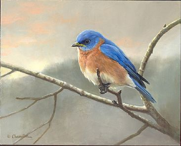 Eastern Bluebird Painting Art By Larry Chandler