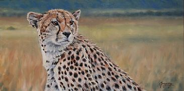 Toto's Mum - Female cheetah by Gregory Wellman