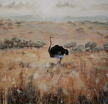 Untitled  - Male Ostrich by Gregory Wellman