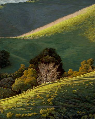 The Light and Dark of Things - Landscape by Dennis Curry