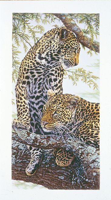 Nature's Pattern - African Leopards by Dennis Curry