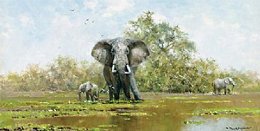 After the Rains - Elephants by David Shepherd