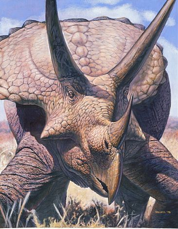 Ancient One - Triceratops horribilis by Mark Hallett