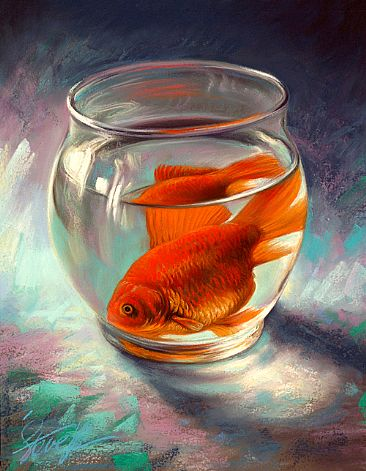 Did you know that your goldfish can live