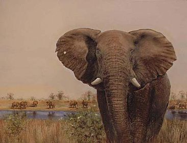 The magic of Africa - Elephants by Josephine Smith