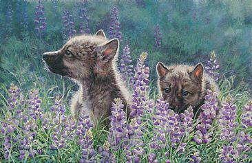 Scent of Spring - Wolf pups by Lindsey Foggett