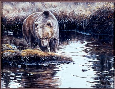 The Opportunist - Grizzly Bear by Lindsey Foggett