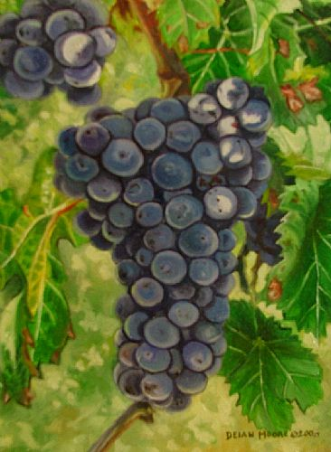 - Grapes by Deian Moore