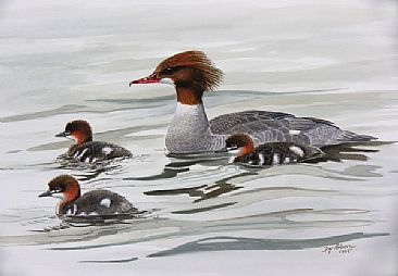 Proud Mother - Common Merganser by Dag Peterson