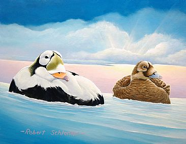 Specs - Spectacled Eiders by Robert Schlenker