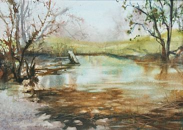 Sycamore Creek - creekside water by Linda Sutton