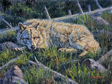 Waiting For Romeo -  Wolf by Leslie Kirchner