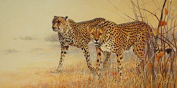 Out of the Long Grass - Cheetahs by Lyn Ellison