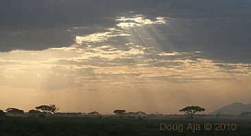 Break Through the Clouds (color) - African Elephants by Douglas Aja