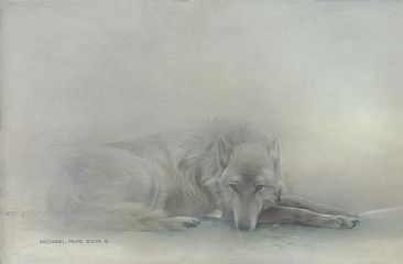 Arctic Wolf Reproduction | RM.