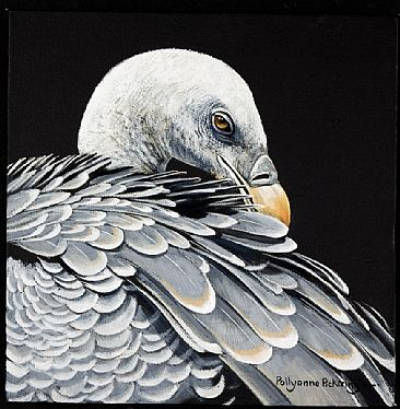 The Scavenger - Vulture by Pollyanna Pickering