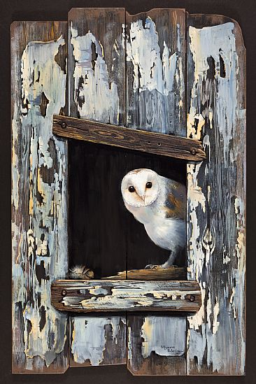 The Old Barn - Barn Owl by Pollyanna Pickering
