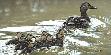 Bumper To Bumper - Mallard Mother & Young by Edward Spera