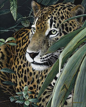 Natural Instinct - Jaguar by Edward Spera