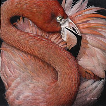 Pretty In Pink - Pink Flamingo by Edward Spera