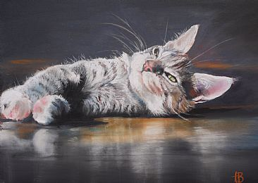 Aspen - Aspen, the silver tabby by Anne Barron