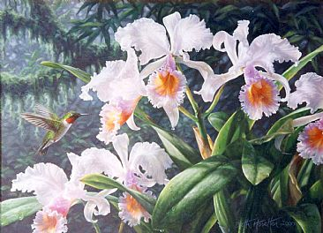 ruby-throated hummingbird and Cattleya orchids - Painting - Nature Art