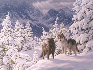 Mountain Majesty - wolves (sold) by Beth Hoselton