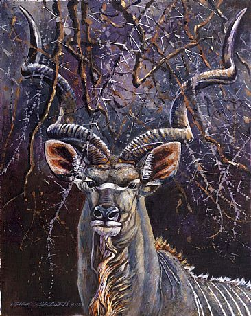 Horns and Thorns - African Wildlife by Peter Blackwell