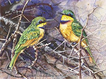 Little Gems - African Birds by Peter Blackwell