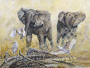 Young Fun - African Wildlife by Peter Blackwell