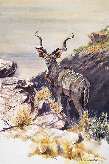 Highlander - SOLD - African Wildlife by Peter Blackwell