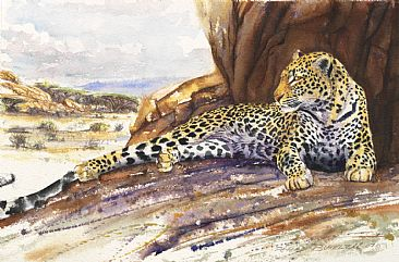 Kopje Cat - African Wildlife by Peter Blackwell