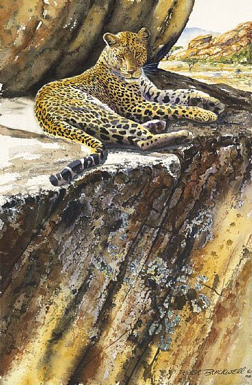 Reposed Leopard - African Wildlife by Peter Blackwell