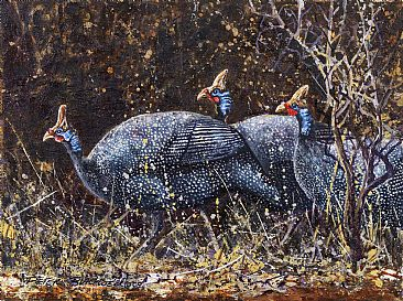 Off and Running - African Birds by Peter Blackwell
