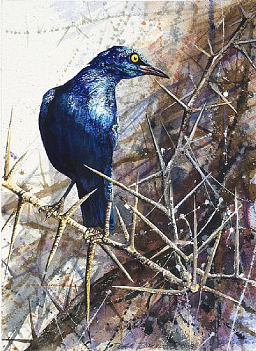 Jewel in the Crown - African Birds by Peter Blackwell