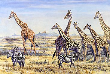 Variations - African Wildlife by Peter Blackwell