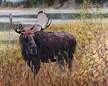 Moose Eyes http://www.natureartists.com/artists/artist_artwork.asp?ArtistID=1225&ArtworkID=10674