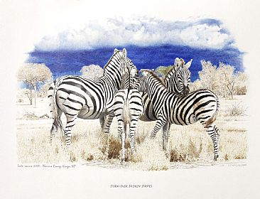Storm Over Broken Stripes - A family of Zebra's together as a storm approaches by Chris McClelland