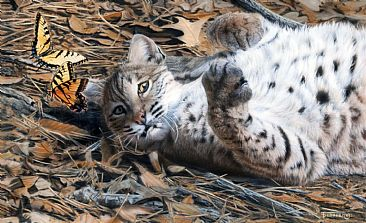 playmates - Bobcat by Tim Donovan