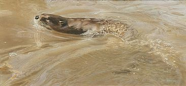 Water Dance - Otter by Tim Donovan