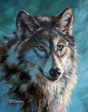 Grey Wolf Study - Grey Wolf by RoseMarie Condon