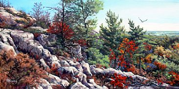 Riding The Wind - La Cloche Mountains and Eagle by RoseMarie Condon