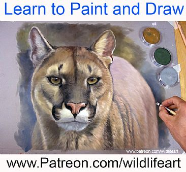 Learn pastels + oils - big cats by Jason Morgan