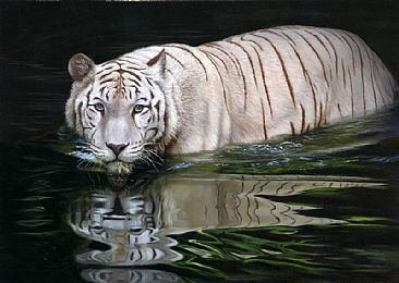 White Tiger painting - big cats - Tigers by Jason Morgan