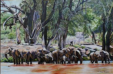 Happy Hour - Elephants drinking at Samburu by Theresa Eichler