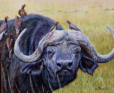 Oxpecker Head - Cape Buffalo with Oxpeckers by Theresa Eichler