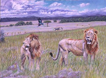 If Lions Ruled the World - male lions in the Masai Mara by Theresa Eichler